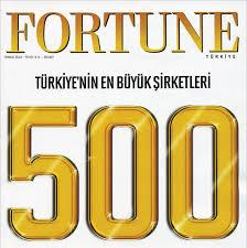 Fortune 500'e hangi Türk şirketleri girdi