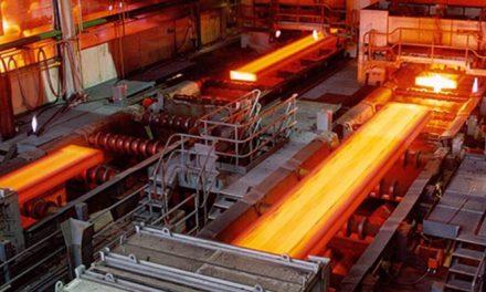 TMSF, Kanton Metal'i satışa çıkardı