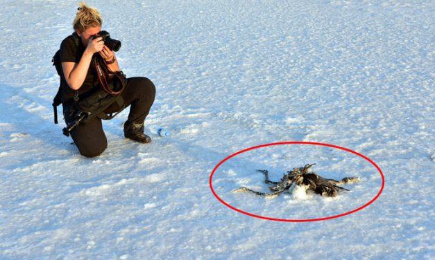 Yer Tuz Gölü… 'Tablo inanılmaz ürkütücü'