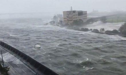 Japonya'da son 25 yılın en şiddetli tayfunu (Jebi hayatı felç etti)