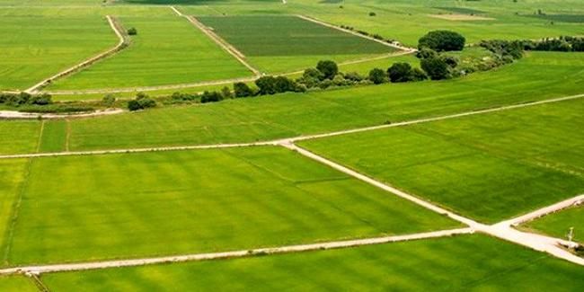Yerli üretim için 41,7 milyon metrekare Hazine arazisi kiraya verilecek