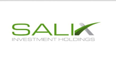 SALIX YATIRIM HOLDINGE 20 MW LIK ÖNLİSANS ALDI.