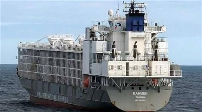 İstanbul'da gemide bekletilen şarbonlu hayvanlar Meclis gündeminde