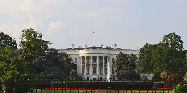 Beyaz Saray darbe planını reddetmedi