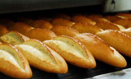 Ekmek fiyatı için Bakan Pakdemirli'den flaş açıklama