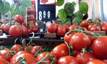 Domates tarlada 3.60 TL, market rafında 8.90 TL