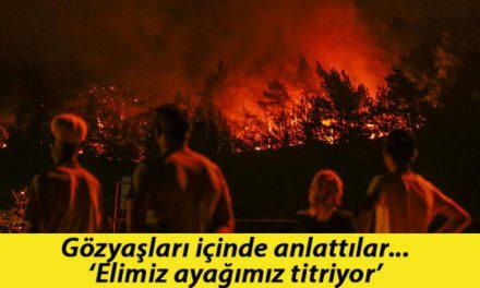 İzmir'deki orman yangınında son durum