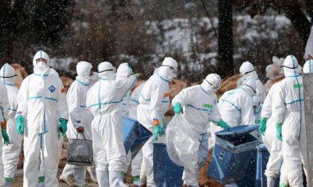 Eski DSÖ çalışanından uyarı: 36 saat içinde 80 milyon kişiyi öldürebilir