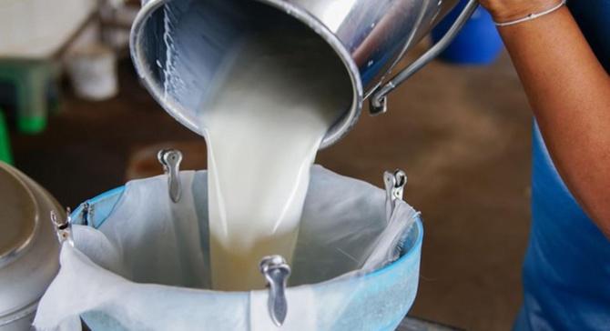 Çiğ süt referans fiyatı 2 lira 30 kuruş olacak