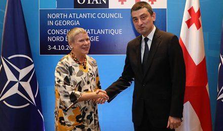 NATO, Karadeniz'de Rusya'nın askeri varlığından endişeli