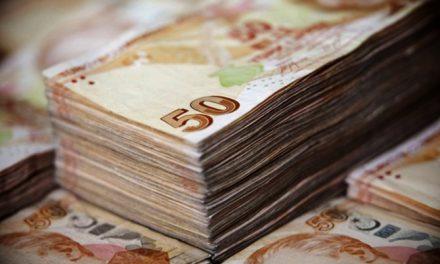 Hazine 4,61 milyar lira borçlandı
