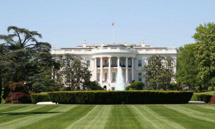 Beyaz Saray'dan New York Times'ın iddialarına yanıt: Trump'ın haberi yoktu