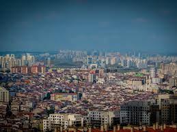 İstanbul'da sivrisinek kabusu büyüyor: İBB SMS ile uyardı