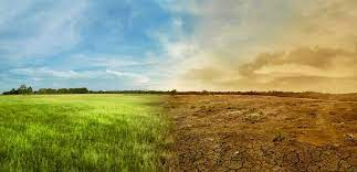 İklim raporu: CO2 miktarı 800 bin yılın zirvesinde, Türkiye'de neler oldu?
