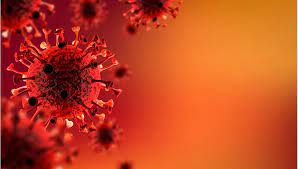 13 Ekim 2021 corona virüs tablosu: 236 can kaybı, 31 bin 248 yeni vaka